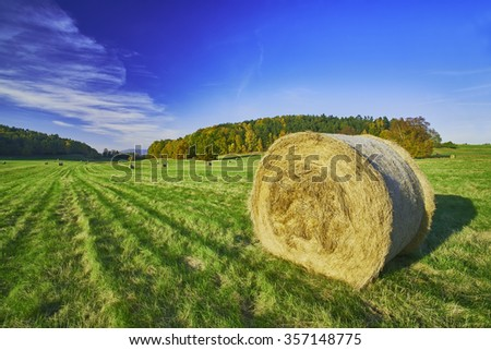 View of the autumn landscape with silage in meadow - stock photo