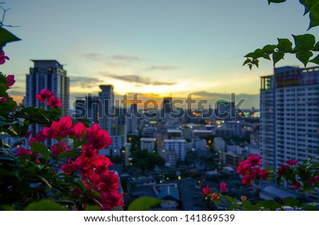 View of the Bangkok in the evening.