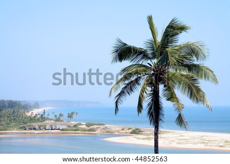 View of the beach with coconut palms. Paradise Beach in Goa, India - stock photo
