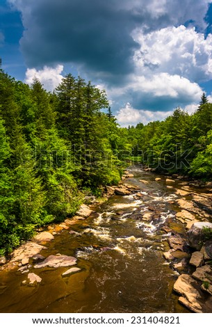 View of the Blackwater River from a bridge at Blackwater Falls State Park, West Virginia. - stock photo