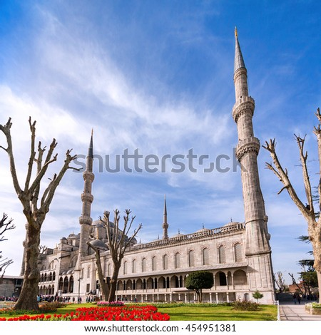View of the Blue Mosque from the park in Istanbul. Sultanahmet Camii. Travel Turkey. The Muslim religion. - stock photo