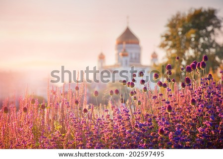 View of the Cathedral of Christ the Savior through the flowerbeds from Krymskaya naberezhnaya (waterfront), Moscow, Russia