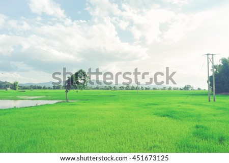 View of the countryside with clouds and fields in Buon Me Thuot, Vietnam in the afternoon