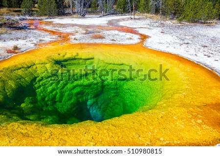 View of the famous Morning Glory Pool in the Upper Geyser Basin in Yellowstone National Park