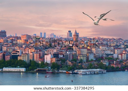 View of the Galata tower and Beyoglu region in Istanbul on a sunset and the flying seagulls - stock photo