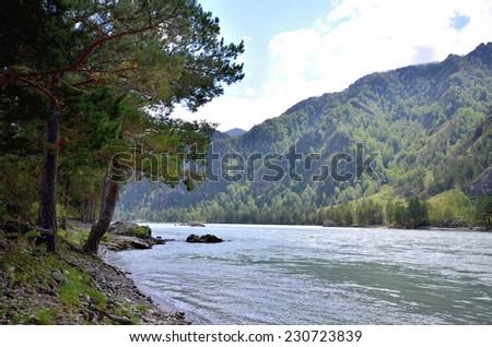 View of the Katun river. Russia, Altai Republic - stock photo