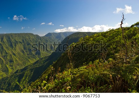 View of the landscape in Kokee State Park on the island of Kauai, Hawaii. - stock photo