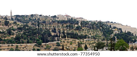 view of the Mount of Olives - stock photo