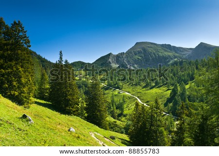 View of the mountain slope. Germany. Jenner am Koenigssee.