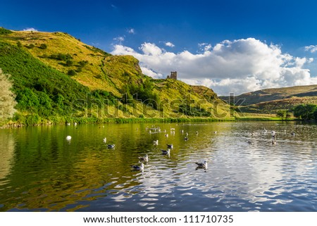 View of the mountains reflected in a lake with birds - stock photo