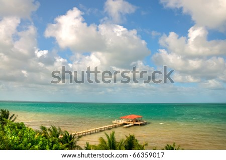 View of the Ocean and a Dock on the Coast of Belize