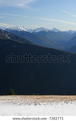 View of the Olympic Mountains from Hurricane Ridge in Olympic National Park, USA - stock photo