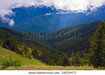 View of the Olympic Mountains on a stormy day, from the Hurricane Hill Trail in Olympic National Park USA - stock photo