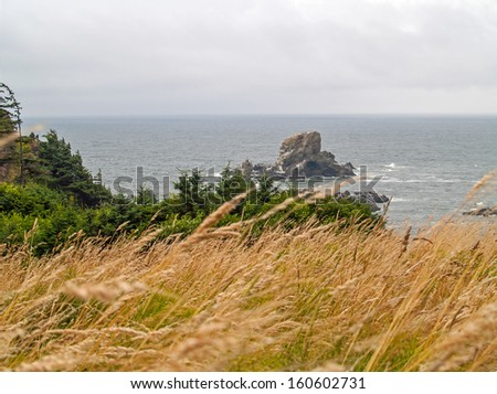 View of the Oregon Coast from Ecola State Park - stock photo