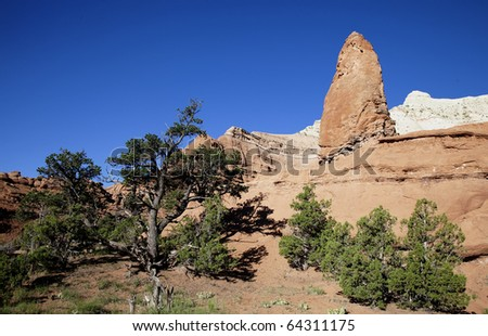 View of the red rock formations in Kodachrome Basin  with blue sky