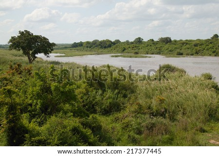 View of the Sabie river, Kruger National Park, South Africa - stock photo