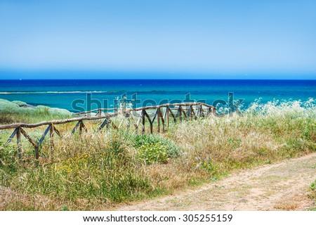 View of the sea coast. Beautiful summer landscape. Malia beach, Crete island, Greece. Selective focus - stock photo