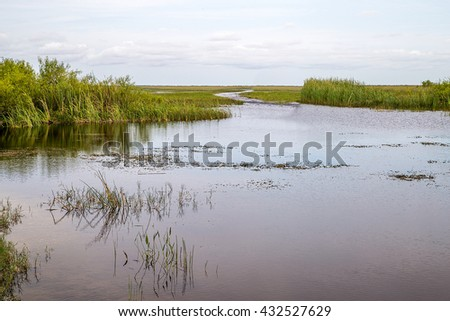 View of the Shark River Slough adjacent to the Tamiami Trail. A slough is slow moving body of water. The Shark River slough flows from Lake Okeechobee to the Florida Bay   - stock photo