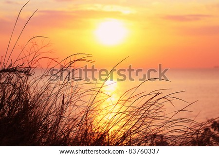 View of the sunrise from grassy cliff - stock photo