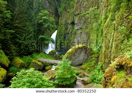 View of the trail that leads to Wahclella falls in the Columbia gorge area. - stock photo