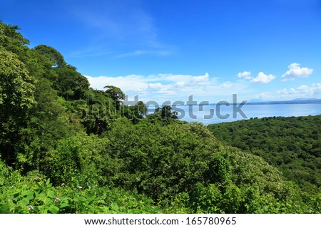 view of the tropical forest from the slope of volcano. Nicaragua - stock photo