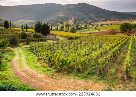 View of the vineyards and the church in Tuscany - stock photo