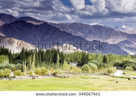 View of Thiksey gompa through the Indus valley in Ladakh, India. This gompa is located on top of a hill in Thiksey village, approximately 19 kilometres (12 mi) east of Leh, the Ladakh capital.   - stock photo