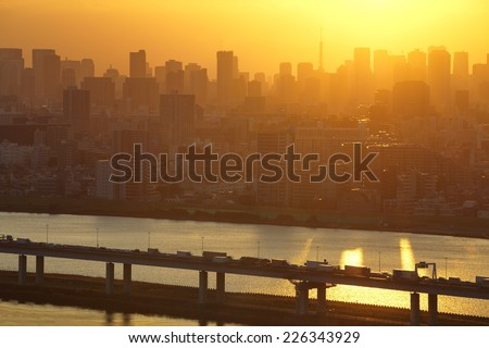 View of Tokyo city and sunset sky in autumn season - stock photo