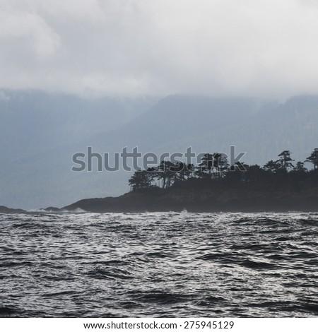 View of trees at coast, Skeena-Queen Charlotte Regional District, Hippa Island, Haida Gwaii, Graham Island, British Columbia, Canada - stock photo