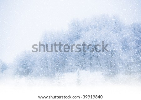 View of trees covered with snow through snowing. Blue tone. - stock photo