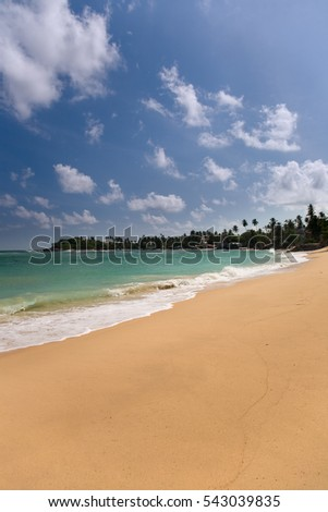 View of tropical beach with house and coconut palm trees , Sri lanka