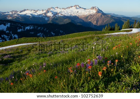 View of Twin Sisters Range, Mount Baker National Forest, WA - stock photo