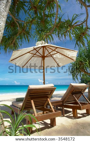 view of two nice chairs and umbrella on mangrove beach