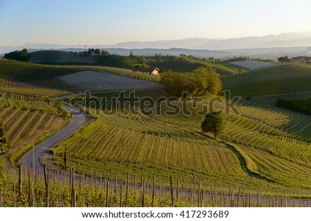 View of wine producing region in the Piedmont region of Northern Italy - stock photo