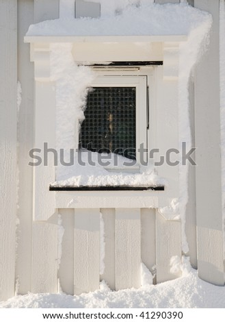 View of wooden window  covered by snow