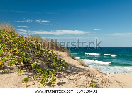 View on dunes of  white sand with green grass, blue sky with clouds and ocean with waves. Indian Ocean tropical beach with waves, Tofo, Mozambique - stock photo