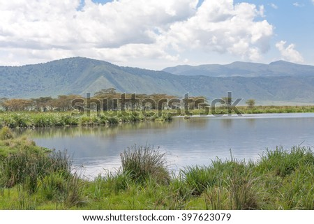 View on huge Ngorongoro caldera (extinct volcano crater) from within with lake before mountain ridge. Great Rift Valley, Tanzania, East Africa.  - stock photo