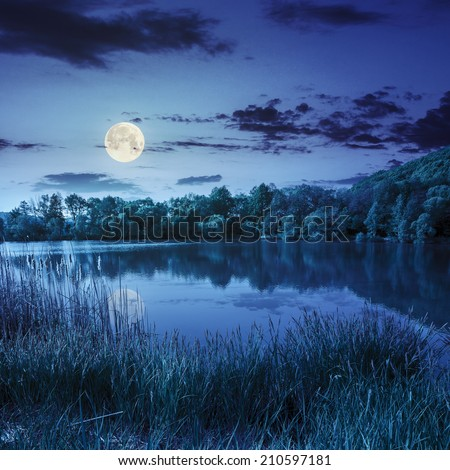 view on lake near the forest on mountain background at night in full moon light - stock photo