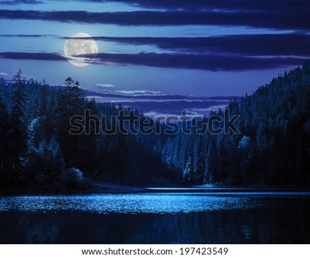 view on lake near the pine forest in mountain background at night in moon light - stock photo