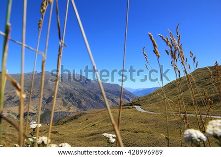 View on Lake Wakatipu,the highway towards it, and its surrounding mountains, near Queenstown, New Zealand. Blurry plants frame the picture in the foreground. - stock photo