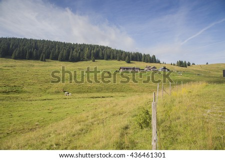 View on meadows and forests on the Asiago Plateau in Italy. A fence on the right demarcates the pasture