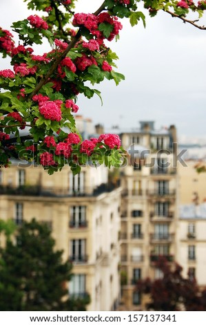 View on Paris from Montmartre hill. Montmartre is primarily known for the white-domed Basilica of the Sacr�© C��ur on its summit and as a nightclub district - stock photo