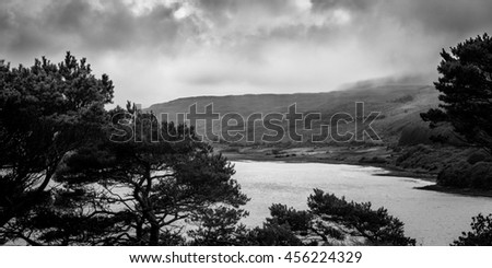 View on scottish landscape and bay with trees framing the foreground with dramatic overcast sky near Portree, Isle of Skye in black and white - stock photo