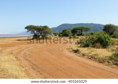 View on sunny landscape on road in national park of Tanzania.