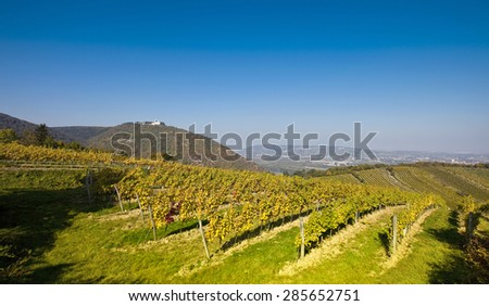 View on the Leopoldsberg Church (left) and the Danube (middle) from a Viennese wine yard in the 19th District in the city of Vienna, Austria - stock photo