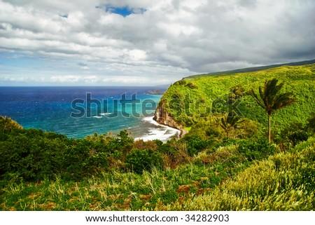 View on the ocean and jungle on Big island. Hawaii. USA - stock photo