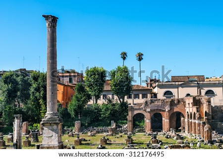 View on the ruins of the Roman Forum, Rome, Italy