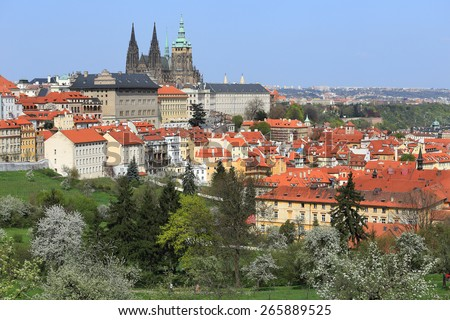 View on the spring Prague with gothic Castle, green Nature and flowering Trees, Czech Republic - stock photo