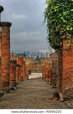 View on Vesuvio and dogs on the Pompeii ancient street. Italy - stock photo