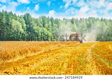 view on work of combine harvester on wheat field in forest instagram stile - stock photo